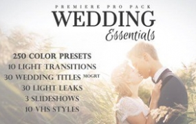 [PR模板]330个婚礼调色相册照片色彩校正预设 文字标题视觉特效MOGRT素材包