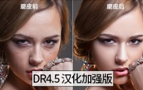 DR4.5加强版-PS磨皮插件滤镜Delicious Retouch 4.5影楼WIN/MAC