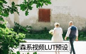 30款森系文艺电影色LUT预设PS/PR/FCPX/达芬奇/AE 视频调色滤镜