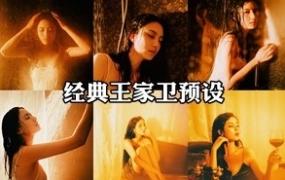 31款港风复古LR预设(+LUTs预设) 王家卫电影色经典暖色lightroom调色效果